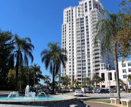 St. Pete Apartments · Clearwater Apartments