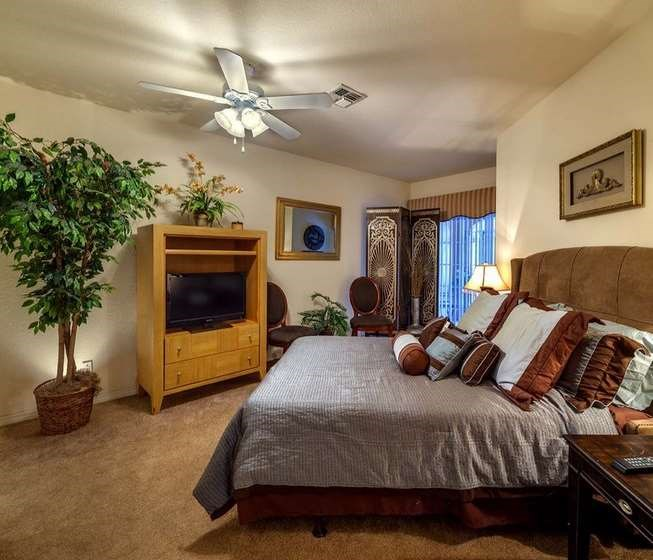 1 Bedroom Apartments Near Usf: Henley Tampa Palms