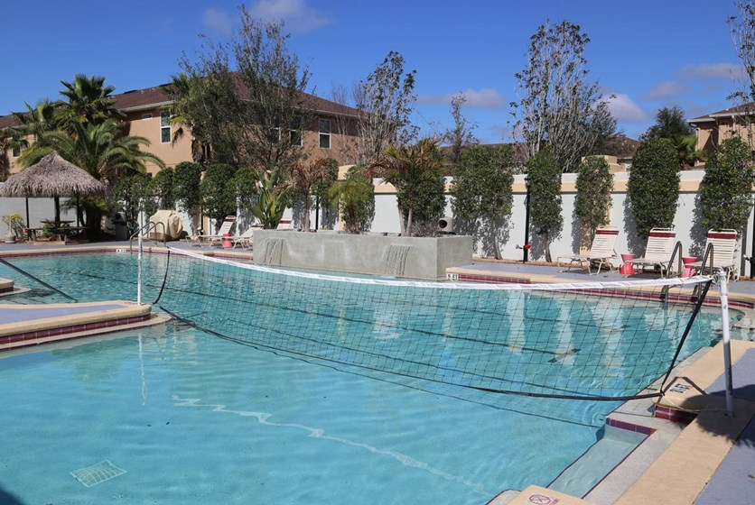 Apartments For Rent In Usf Area
