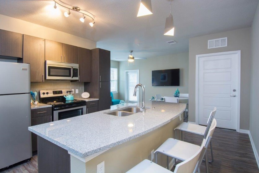 Iq apartments student living near usf renttampabay for 1 bedroom student housing tampa