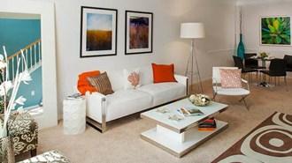 Loft Apartments in Tampa Florida RentTampaBay