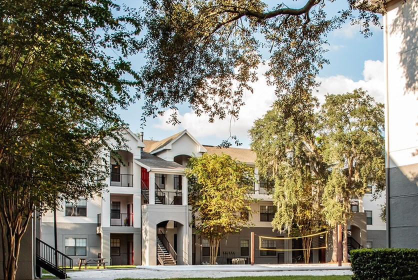 Photo  1. The Ivy Apartments near USF in Tampa  FL   RentTampaBay